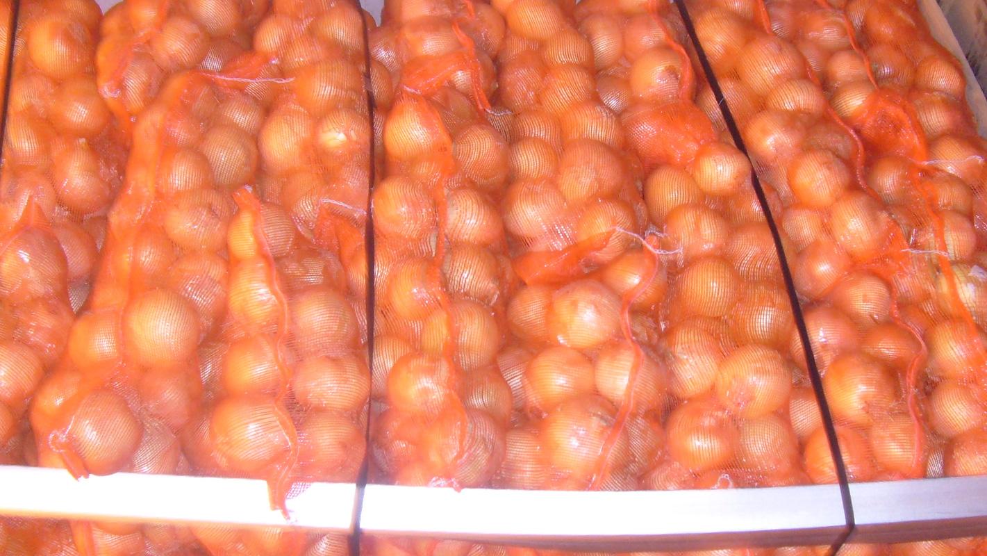 distribuidor cebollas