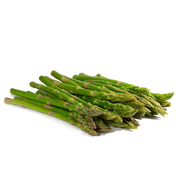 proveedor espárragos verdes
