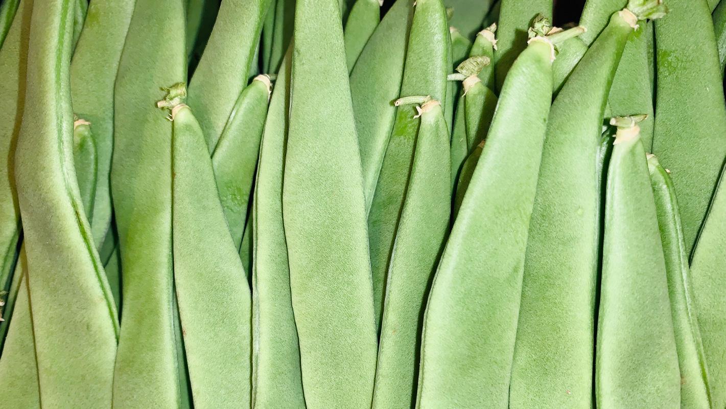 productor judía verde mercamadrid