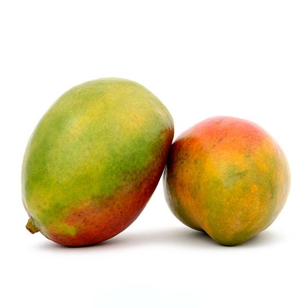 mayoristas mango