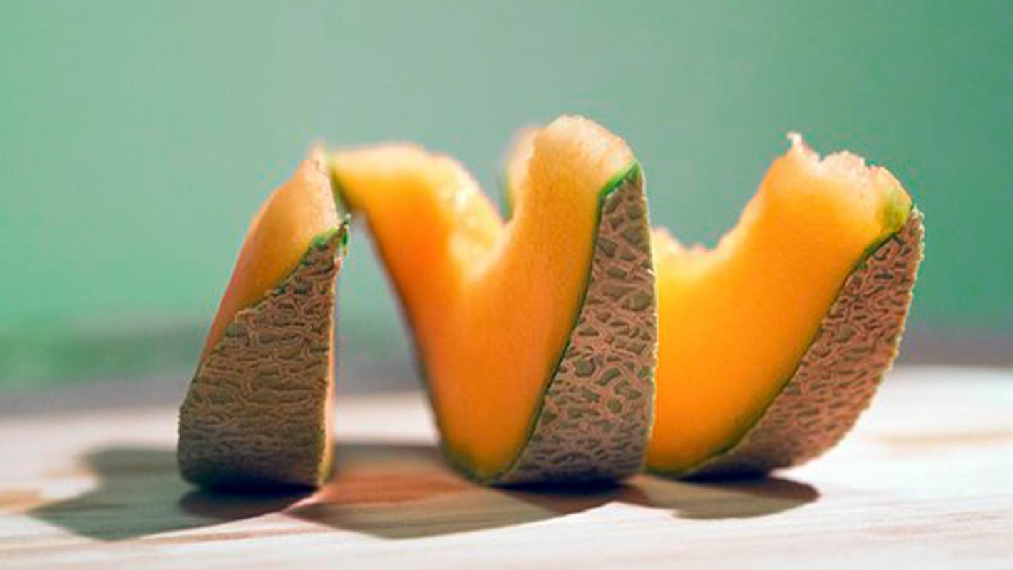 productor melón cantalupo