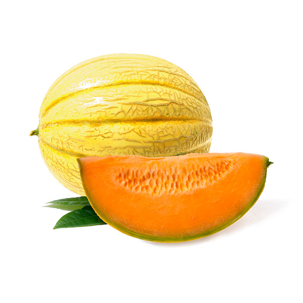 mayoristas melon cantalupo
