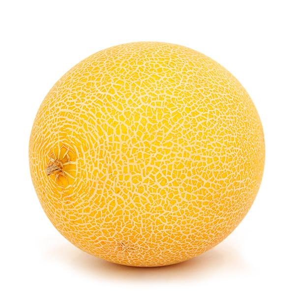 mayoristas melon galia