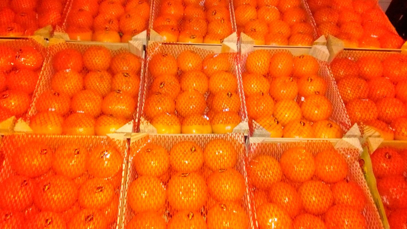 mayorista naranjas mercamadrid